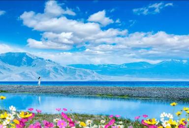 新疆伊犁 赛里木湖 巴音布鲁克那拉提 吐鲁番 库木塔格独子山(8日行程)