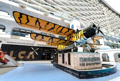 成都立巢航空博物馆自助游+1对1动态模拟飞行体验(1日行程)