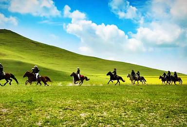 金秋坝上草原-骑马-免费烤全羊-篝火狂欢-神仙谷七彩森林!(3日行程)