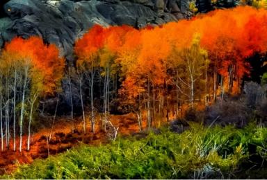 喇叭沟门 探寻北京最美秋色-穿越原始森林赏秋行摄(1日行程)