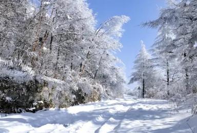 [冰雪梦幻A线7日舒适团]5S滑雪+徒步梦幻雪山+镜泊冬捕(7日行程)