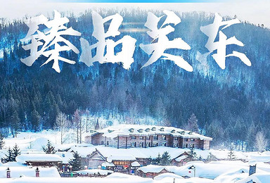 [激情闯关东]哈尔滨雪谷雪乡长白山雾凇岛温暖冬季畅爽七日游(7日行程)