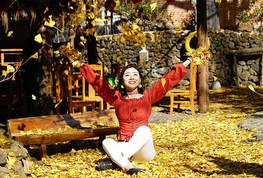 腾冲银杏-和顺古镇-热海景区-荷花温泉双飞摄影团(4日行程)