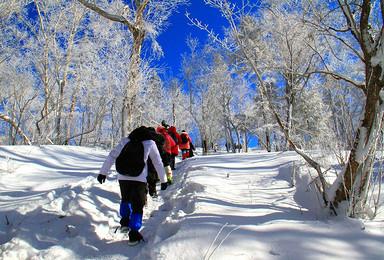 [极寒挑战]45KM徒步穿越丨羊草山+梦幻雪山+镜泊湖蓝冰(6日行程)