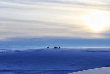 冬季新疆 |  伊犁河谷 ? 雪中天山,一半是冰雪一半是火焰(9日行程)
