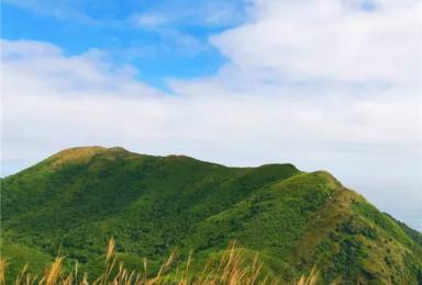 惠州四方山穿越--难度4星(1日行程)