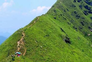 攀登莫六公顶—行走阳山屋脊之上,俯瞰万亩峰林波浪(1日行程)