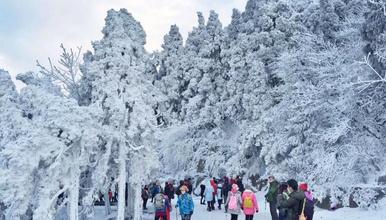 [雪色衡山]雾凇来了!赏醉美冬日南岳衡山,登祝融峰顶祈福许愿(3日行程)