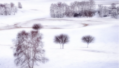 乌兰布统 塞北雪乡-越野驰骋-马踏飞雪-冰雪童话-摄影深度游(3日行程)