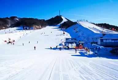 云佛山滑雪 性价比最高的综合性大型雪场(1日行程)