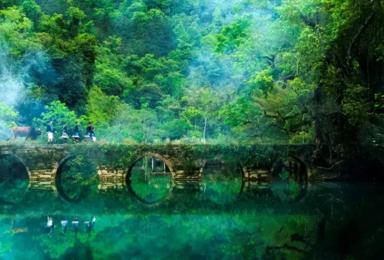 贵州 梵净山+黄果树+小七孔+西江苗寨+镇远古镇 经典游(5日行程)