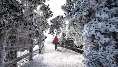 [大美莽山]漫步悬空栈道、观莽山云海雾凇、探秘丹霞石林悬崖(2日行程)