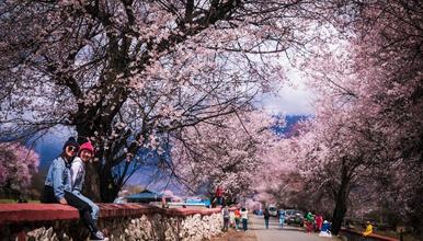2021年林芝桃花节 穿越丙察察  最美最原始的进藏路(10日行程)