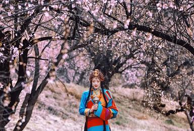 穿越丙察察 云瞰西藏越野之旅 林芝桃花节奔赴一场雪域粉色春天(10日行程)