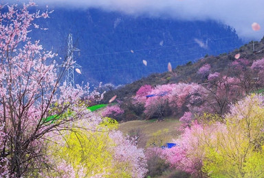 318景观大道滇藏线相约林芝桃花 圣地西藏越野之旅(9日行程)