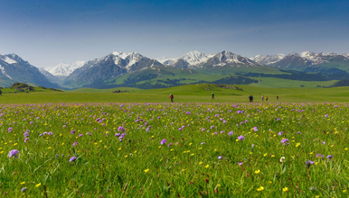 新疆 琼库什台 东西喀拉峻 塔里木 喀拉峻小环线徒步 含餐(7日行程)