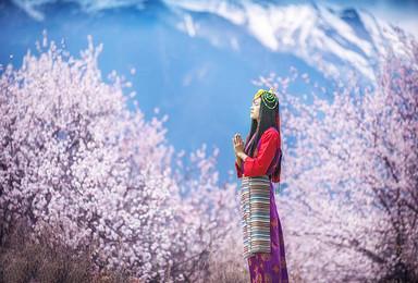 林芝桃花村-雅鲁藏布大峡谷-波密桃花沟-来古冰川-然乌湖(9日行程)