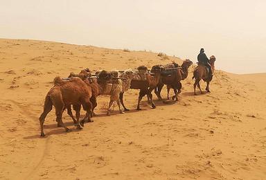 [沙漠徒步]经典腾格里沙漠徒步 五湖连穿 遇见未知的风景(4日行程)