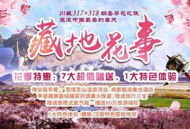 林芝桃花+波密桃花+金川梨花·川藏317+318朝圣寻花之旅(10日行程)