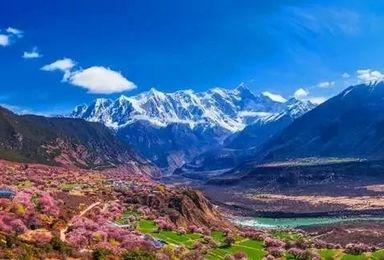 2021年相约林芝桃花丨穿越丙察察,寻访中国最美的春天!(10日行程)