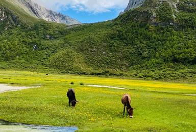 生命中该有一次的旅行 香格里拉稻城亚丁泸沽湖穿越泸亚线之旅(7日行程)