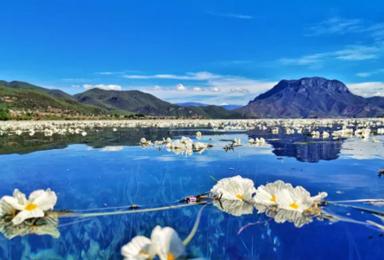 云南丽江-泸沽湖-大理-香格里拉、经典小众一网打尽 深度纯玩(7日行程)
