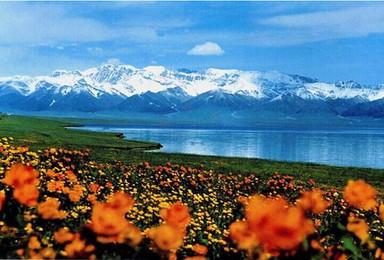 新疆喀纳斯禾木五彩滩白哈巴伊犁那拉提巴音布鲁克赛里木湖魔鬼城(9日行程)