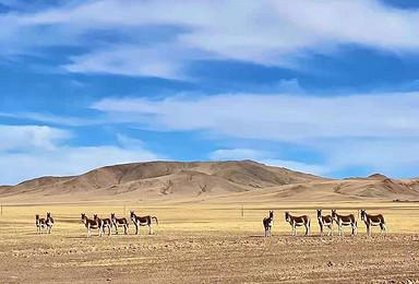 2021阿里珠峰藏北班公措纳木错圣象天门14日游(14日行程)