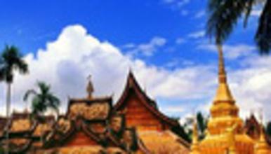 云南西双版纳 橄榄坝 元阳梯田 曼听公园 望天树 热带植物园(8日行程)