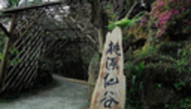 桃园仙谷赏瀑徒步 登山 一线天 鸳鸯槐 看最壮观的高山流水(1日行程)