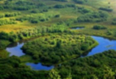 呼伦贝尔 海拉尔 室韦 二卡跨国湿地 白桦林 满洲里(5日行程)