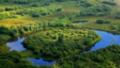 呼伦贝尔 海拉尔 室韦 二卡跨国湿地 白桦林 黑山头 满洲里(5日行程)
