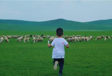 呼伦贝尔大草原,越野车穿越草原无人区,体验牧民生活2日游(2日行程)