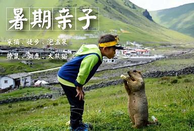 [暑期亲子]喇叭河驯鹿+莫斯卡撩鼠+党岭采摘徒步+大熊猫苑(5日行程)