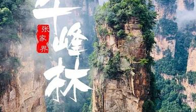 端午 纯玩张家界 湘西秘境 武陵源+金鞭溪+天子山+袁家界(3日行程)