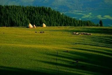 新疆环天山穿独库 赛里木湖 喀拉峻那拉提 巴音布鲁克独库公路(9日行程)