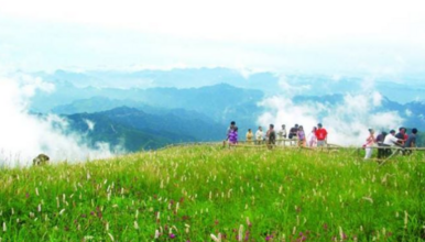 北京徒步—百花山(端午发团)(1日行程)