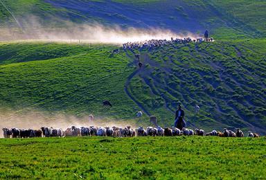 新疆赛里木湖 喀拉峻 八卦城 那拉提 巴音布鲁克 独库公路(7日行程)