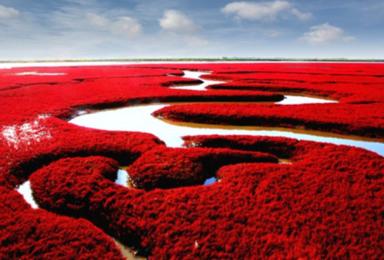 [梦幻东北小包团]盘锦红海滩+关门山红叶+中朝边境+长白山(6日行程)